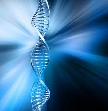 DNA Δότης - Αρχαία Σοφία και Συν-Αίσθημα