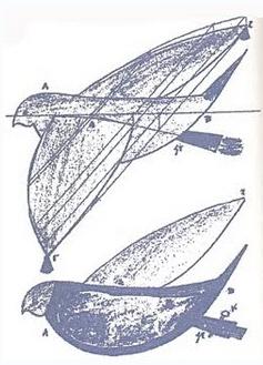 Το πρώτο μοντέλο αεροπλάνου που πέταξε στον ελληνικό ουρανό, στα  425 π.Χ.