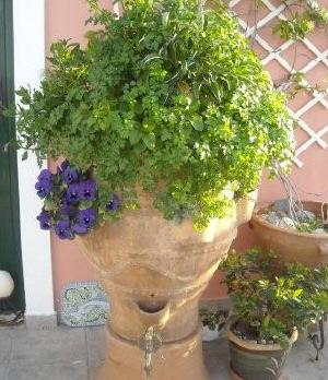 Κομποστοποίηση στον κήπο, Φυσική καλλιέργεια