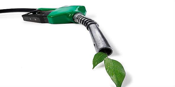 green_fuel