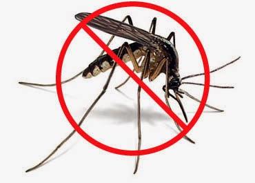 Τί να κάνετε για να μη σας τσιμπήσει ποτέ κουνούπι...