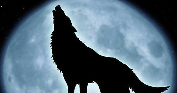"""Το φεγγάρι Ï""""Î¿Ï… λύκου"""