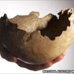 Κανίβαλοι οι αρχαίοι Βρετανοί-Έτρωγαν τους νεκρούς τους και έφτιαχναν κύπελλα από τα κρανία τους όταν...