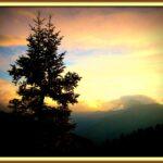 """Στο βωμό των """"πράσινων αλόγων"""" και παραλόγων τα βουνά και τα ποτάμια μας..."""