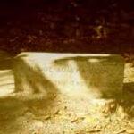 ΑΝΑΚΟΙΝΩΣΗ ΤΟΥ ΣΥΛΛΟΓΟΥ ΕΚΤΑΚΤΩΝ ΑΡΧΑΙΟΛΟΓΩΝ (Σ.ΕΚ.Α.) και ΠΑΝΕΛΛΗΝΙΑΣ ΕΝΩΣΗΣ ΝΥΧΤΟΦΥΛΑΚΩΝ ΑΡΧΑΙΟΦΥΛΑΚΩΝ (ΠΕΝΑ)
