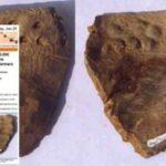 Ευρήματα μιλούν για 20 χιλ. χρόνια ανθρώπινου πολιτισμού
