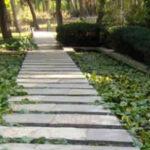 Μεσογειακός κήπος 50 στρεμμάτων στο Ηράκλειο