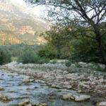 Επιστρέφει η ζωή σε 4 ποτάμια της Ελλάδας