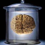 Μπορεί το μυαλό να νικήσει τον πόνο;