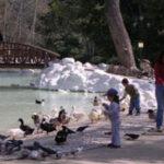 Καλοκαιρινά προγράμματα για παιδιά στον Εθνικό Κήπο