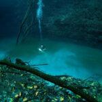 Cenote Angelita: Το μυστικό υποβρύχιο ποτάμι στην χερσόνησο Γιουκατάν [Εικόνες Βίντεο]
