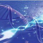 Το DNA φωτίζει την καταγωγή των Ελλήνων: Γενετικά όμοιοι με τους πληθυσμούς των περιοχων Β.Ν.Α.Δ του Αιγαίου πριν από 5.000 χρόνια